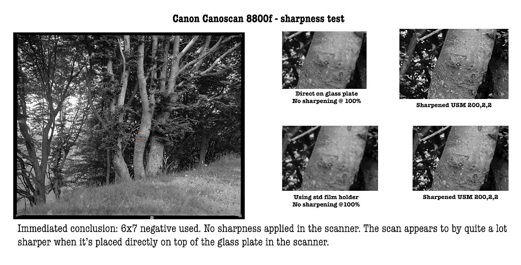 canoscan-8800f-sharpness-test.jpg